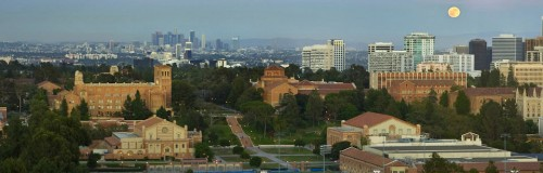 cropped-ucla-matthew-6331.jpg