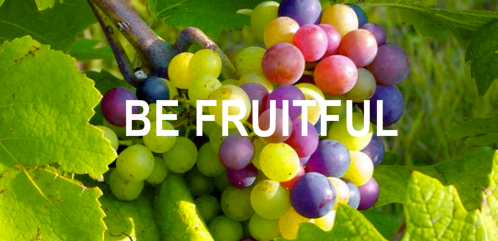 Image result for be fruitful